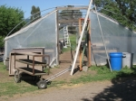 greenhouse_1_1