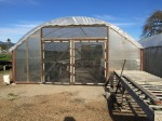 The small greenhouse has moved! And it's back in action, just in time.